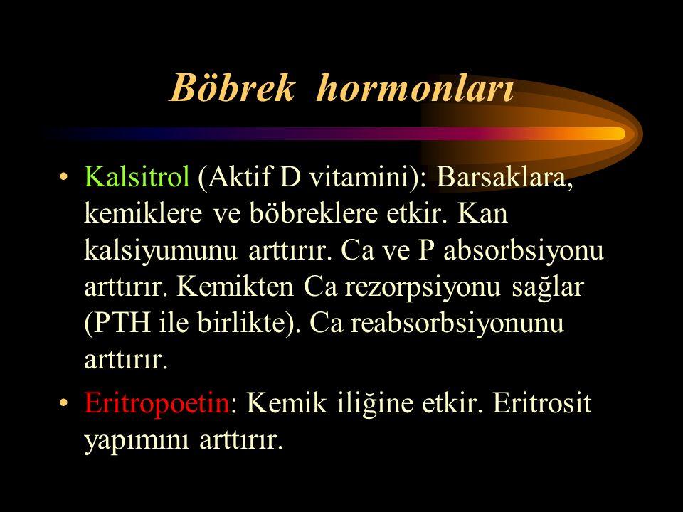Böbrek hormonları