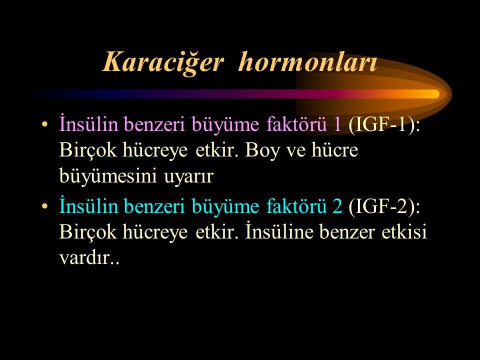 Karaciğer hormonları İnsülin benzeri büyüme faktörü 1 (IGF-1): Birçok hücreye etkir. Boy ve hücre büyümesini uyarır.