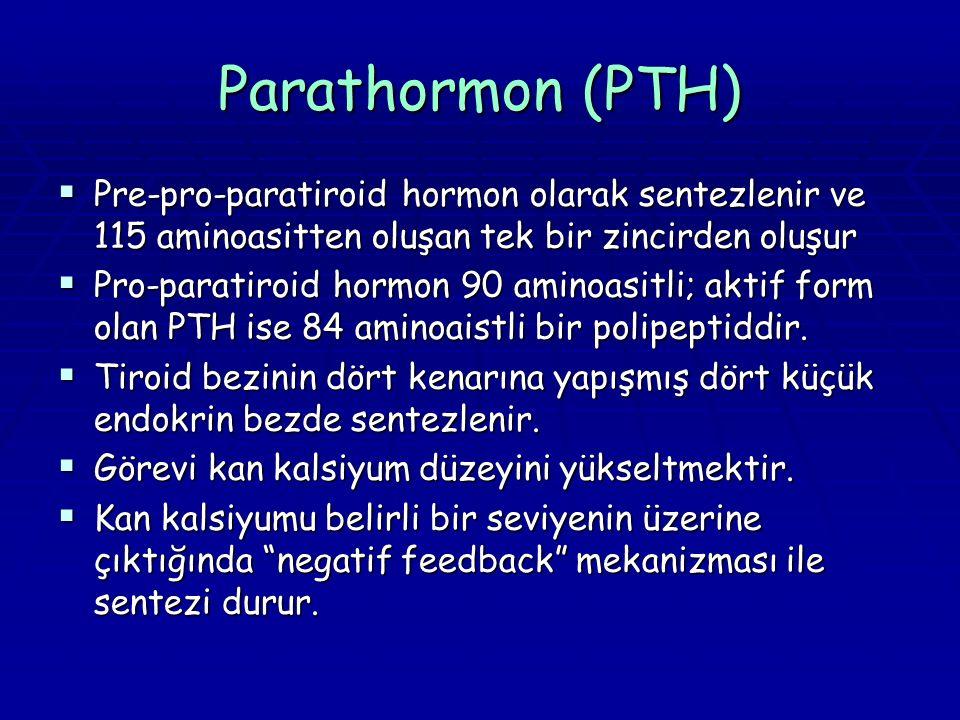 Parathormon (PTH) Pre-pro-paratiroid hormon olarak sentezlenir ve 115 aminoasitten oluşan tek bir zincirden oluşur.