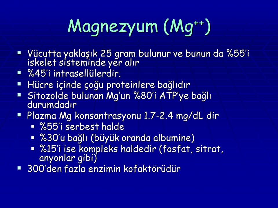 Magnezyum (Mg++) Vücutta yaklaşık 25 gram bulunur ve bunun da %55'i iskelet sisteminde yer alır. %45'i intrasellülerdir.