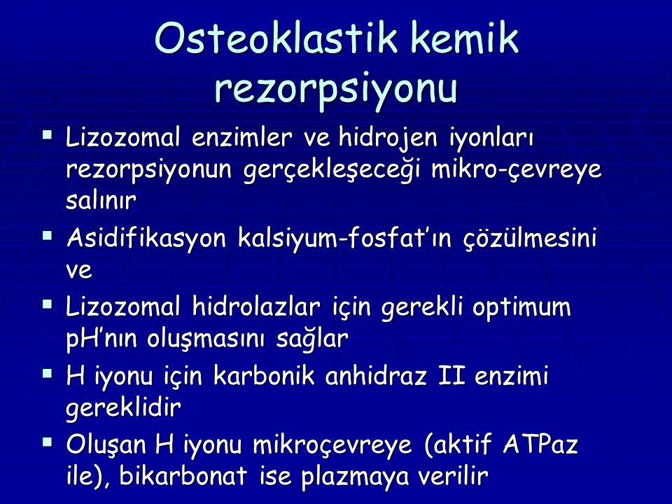 Osteoklastik kemik rezorpsiyonu