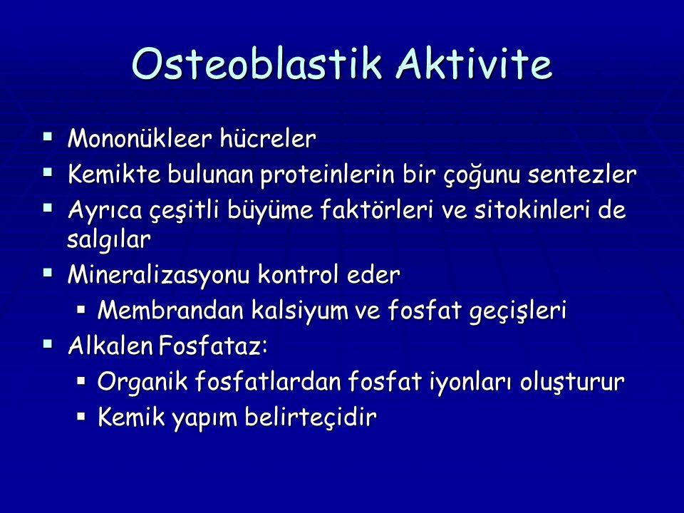 Osteoblastik Aktivite