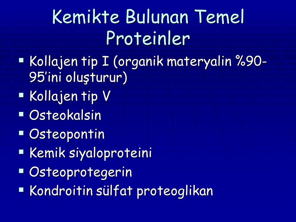 Kemikte Bulunan Temel Proteinler