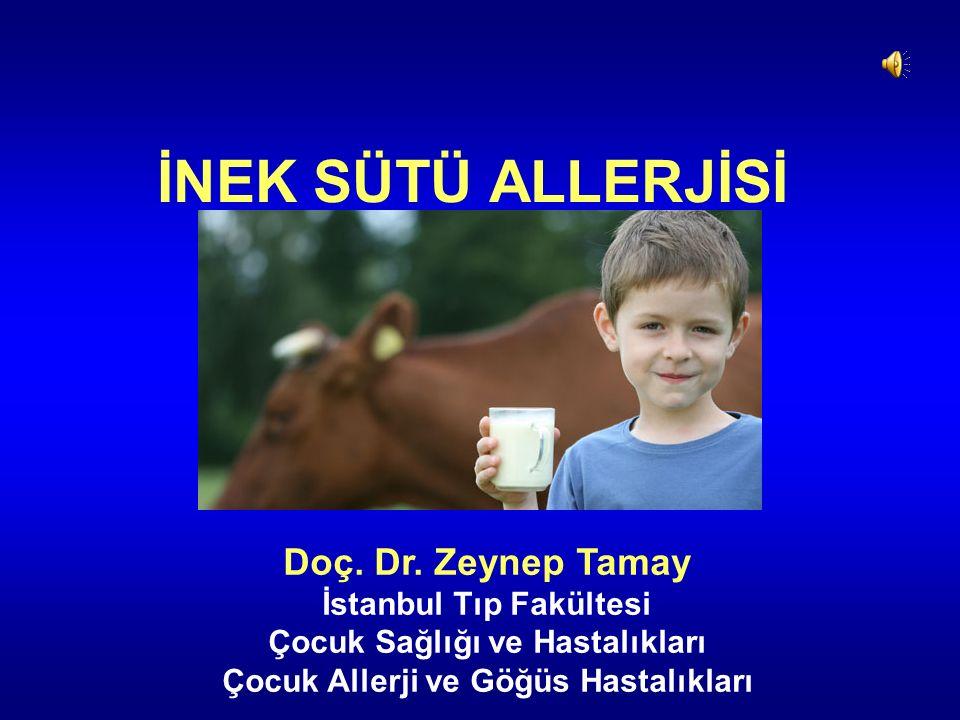 İNEK SÜTÜ ALLERJİSİ Doç. Dr. Zeynep Tamay İstanbul Tıp Fakültesi