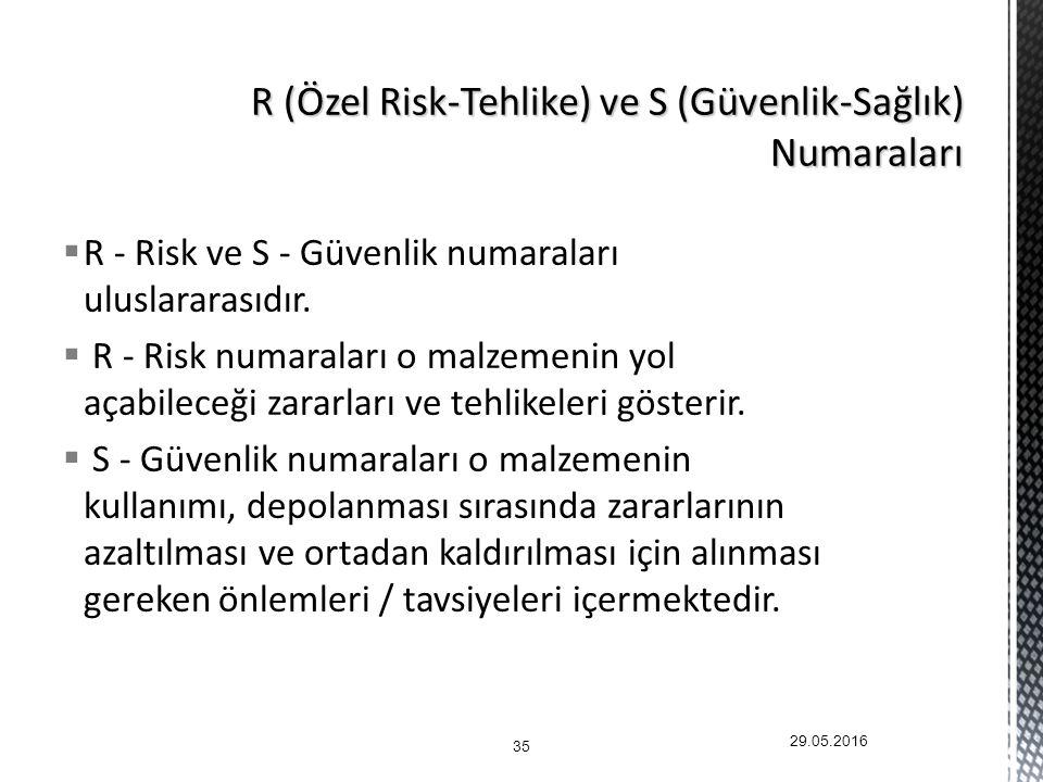 R (Özel Risk-Tehlike) ve S (Güvenlik-Sağlık) Numaraları