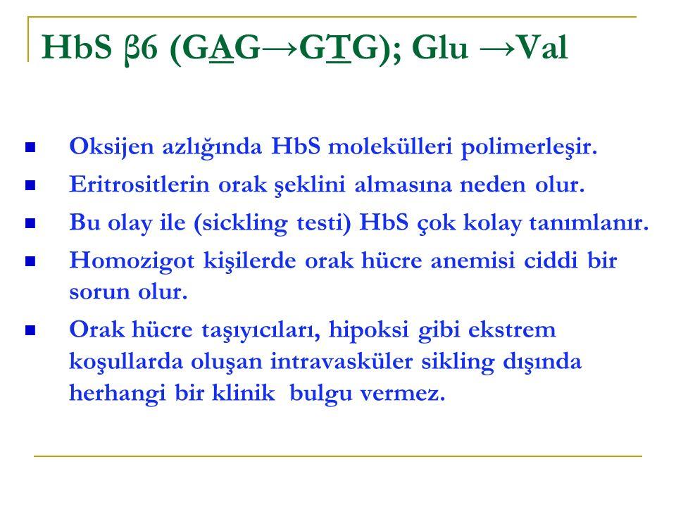 HbS β6 (GAG→GTG); Glu →Val