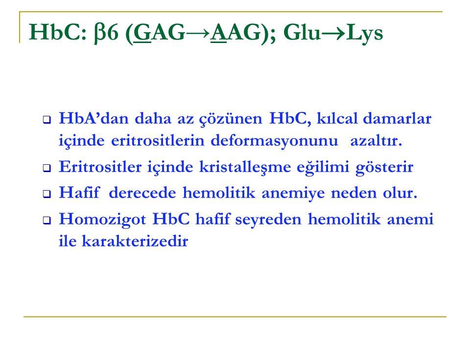 HbC: 6 (GAG→AAG); GluLys