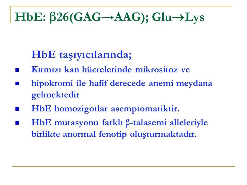 HbE: 26(GAG→AAG); GluLys