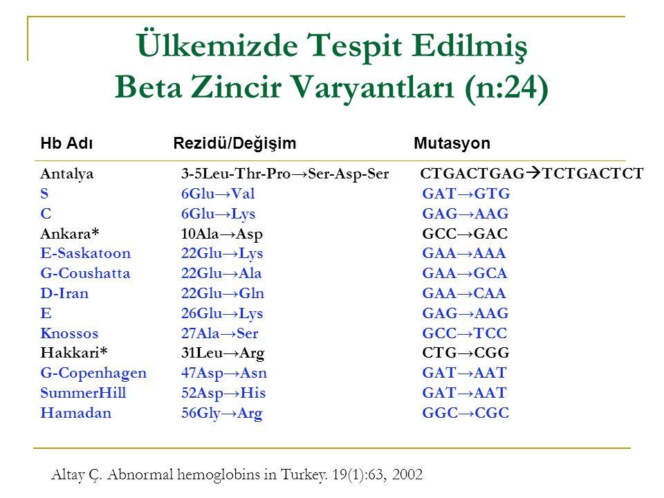 Ülkemizde Tespit Edilmiş Beta Zincir Varyantları (n:24)