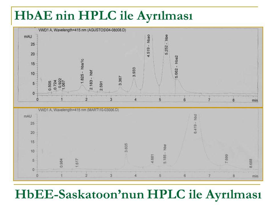 HbAE nin HPLC ile Ayrılması