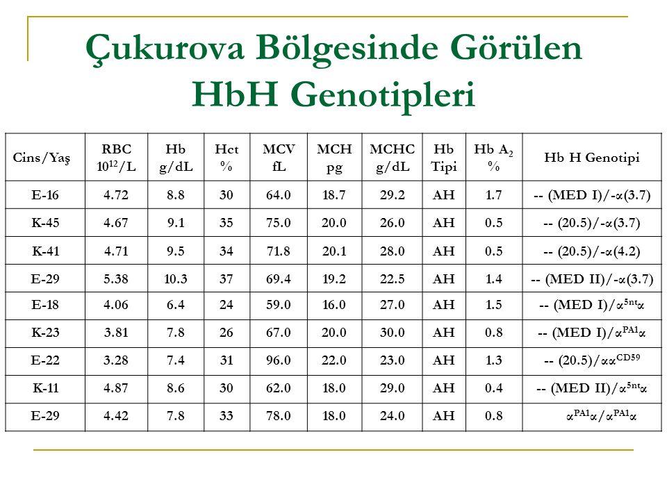 Çukurova Bölgesinde Görülen HbH Genotipleri
