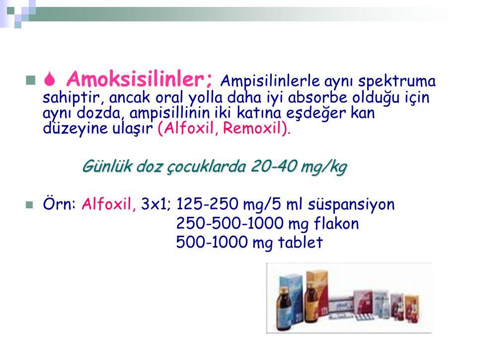  Amoksisilinler; Ampisilinlerle aynı spektruma sahiptir, ancak oral yolla daha iyi absorbe olduğu için aynı dozda, ampisillinin iki katına eşdeğer kan düzeyine ulaşır (Alfoxil, Remoxil).