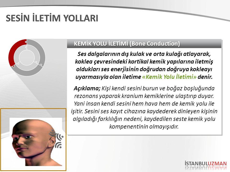 SESİN İLETİM YOLLARI KEMİK YOLU İLETİMİ (Bone Conduction)