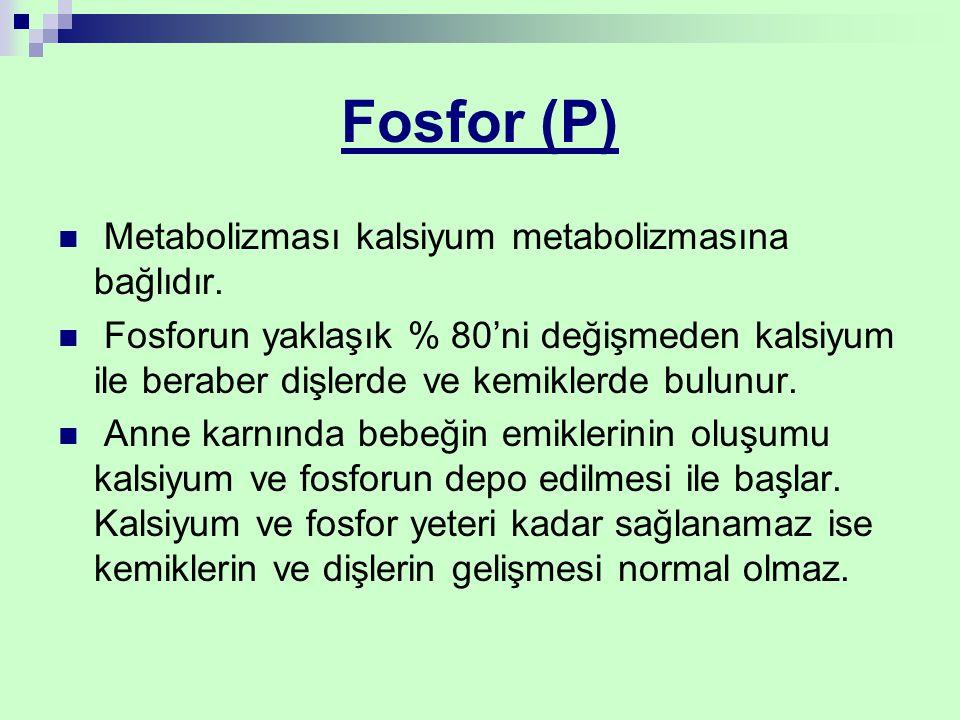 Fosfor (P) Metabolizması kalsiyum metabolizmasına bağlıdır.