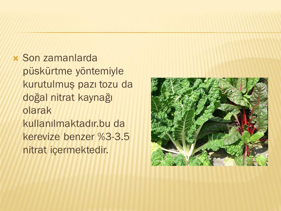 Son zamanlarda püskürtme yöntemiyle kurutulmuş pazı tozu da doğal nitrat kaynağı olarak kullanılmaktadır.bu da kerevize benzer %3-3.5 nitrat içermektedir.