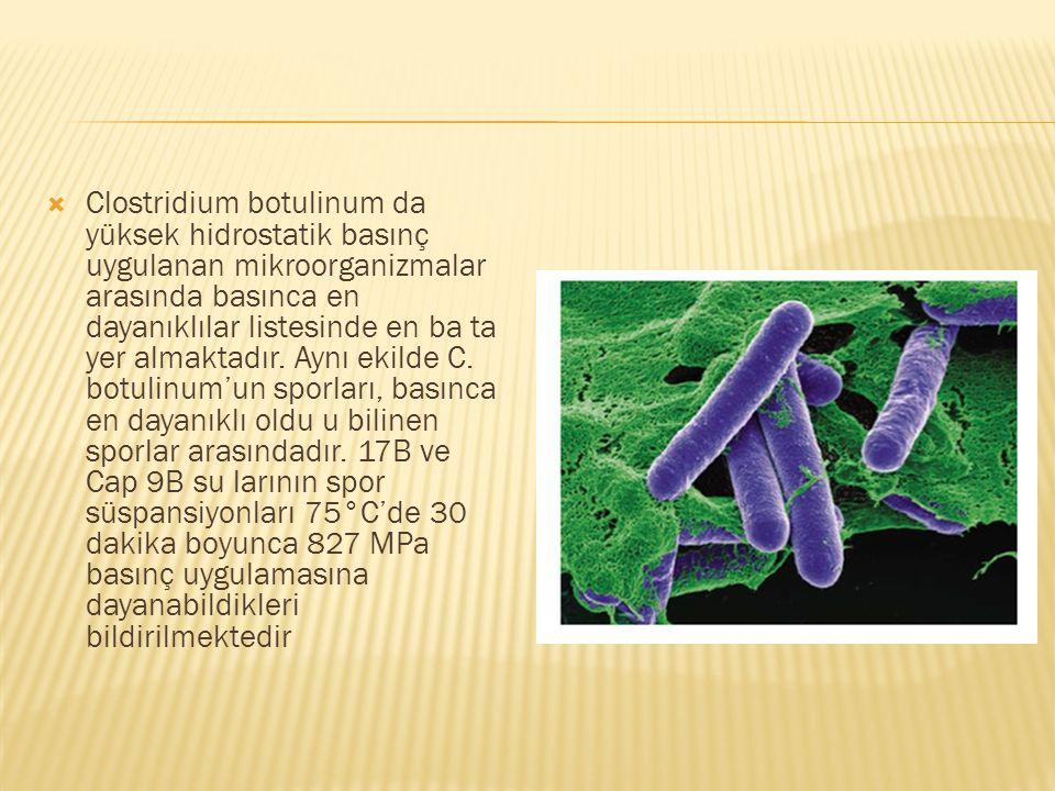 Clostridium botulinum da yüksek hidrostatik basınç uygulanan mikroorganizmalar arasında basınca en dayanıklılar listesinde en ba ta yer almaktadır.