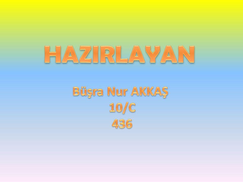 HAZIRLAYAN Büşra Nur AKKAŞ 10/C 436