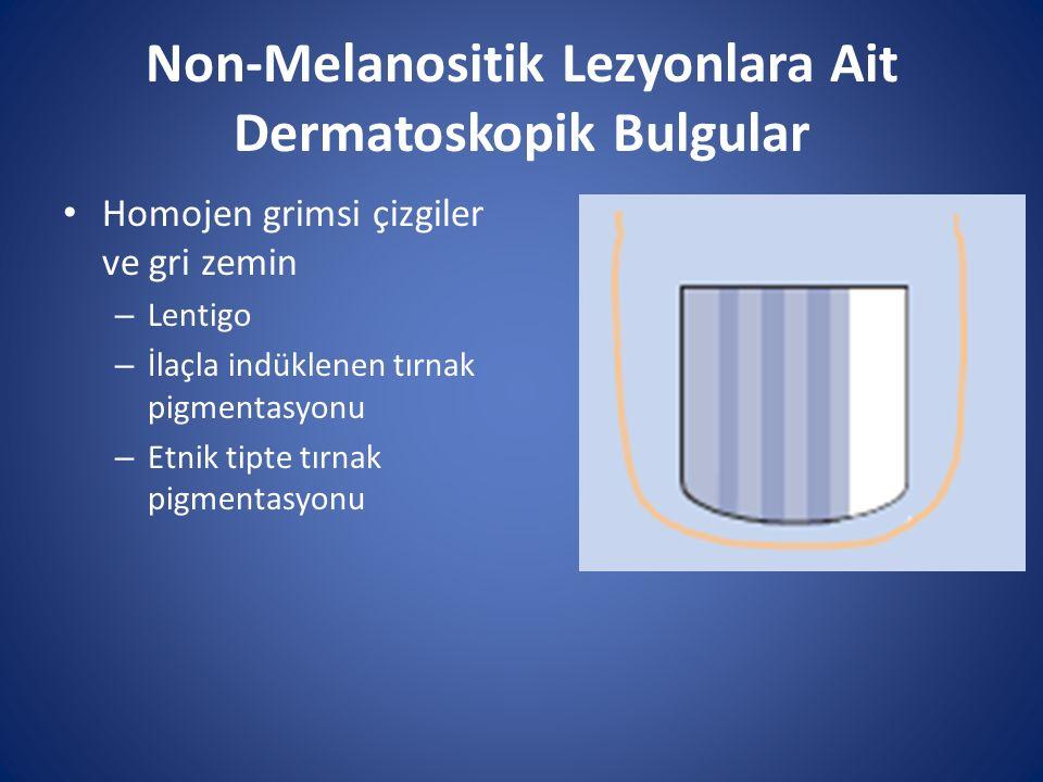 Non-Melanositik Lezyonlara Ait Dermatoskopik Bulgular