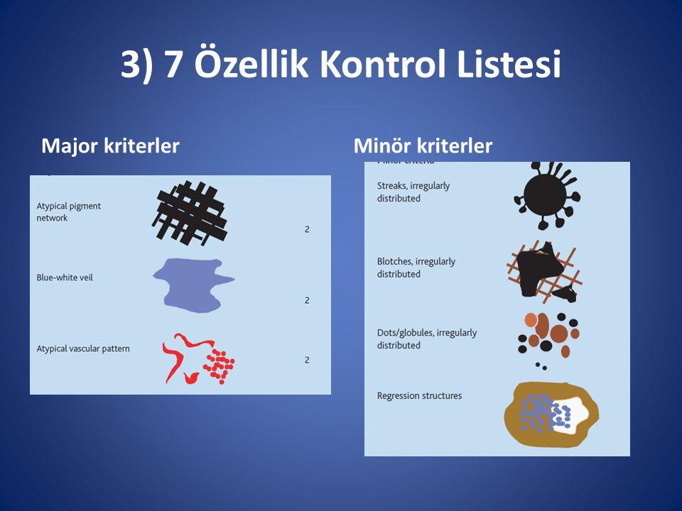 3) 7 Özellik Kontrol Listesi