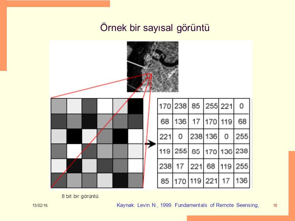 Örnek bir sayısal görüntü