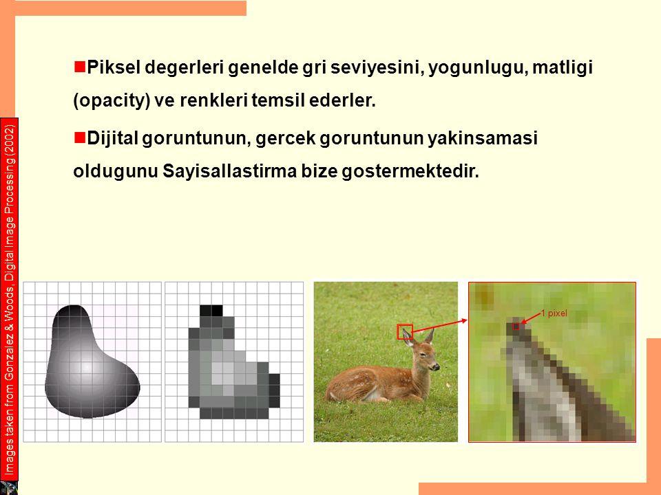 Piksel degerleri genelde gri seviyesini, yogunlugu, matligi (opacity) ve renkleri temsil ederler.