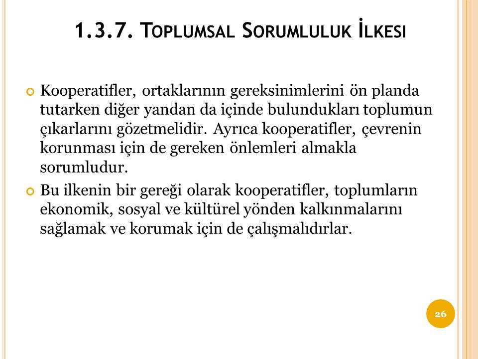 1.3.7. Toplumsal Sorumluluk İlkesi