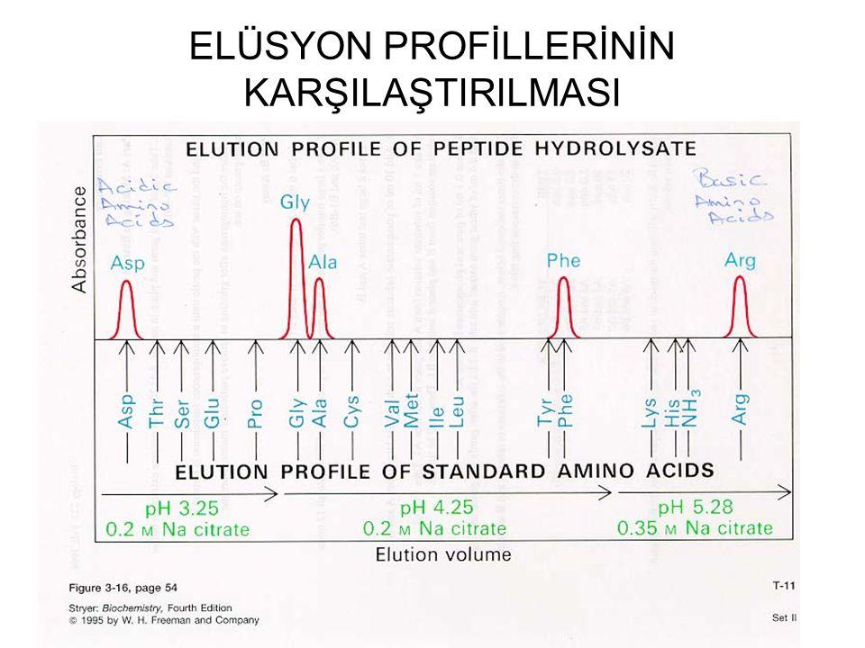 ELÜSYON PROFİLLERİNİN
