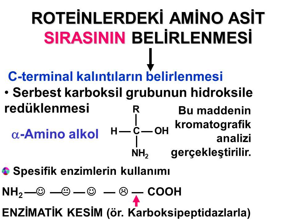 ROTEİNLERDEKİ AMİNO ASİT SIRASININ BELİRLENMESİ