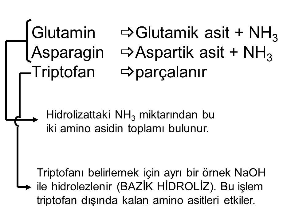Glutamin. Glutamik asit + NH3 Asparagin