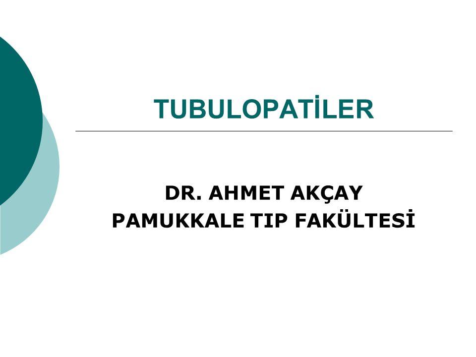 DR. AHMET AKÇAY PAMUKKALE TIP FAKÜLTESİ