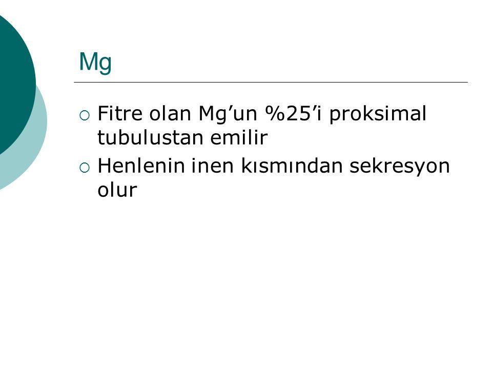 Mg Fitre olan Mg'un %25'i proksimal tubulustan emilir
