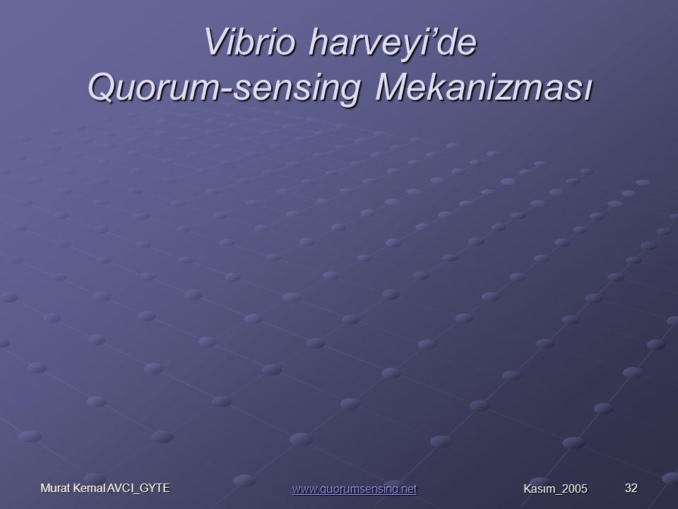 Vibrio harveyi'de Quorum-sensing Mekanizması