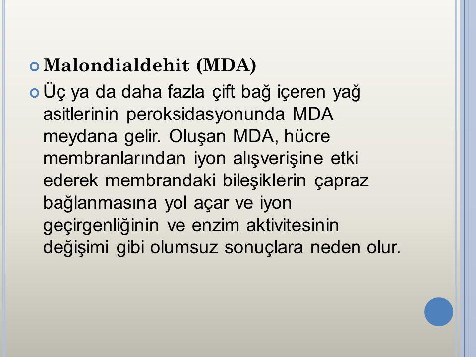 Malondialdehit (MDA)