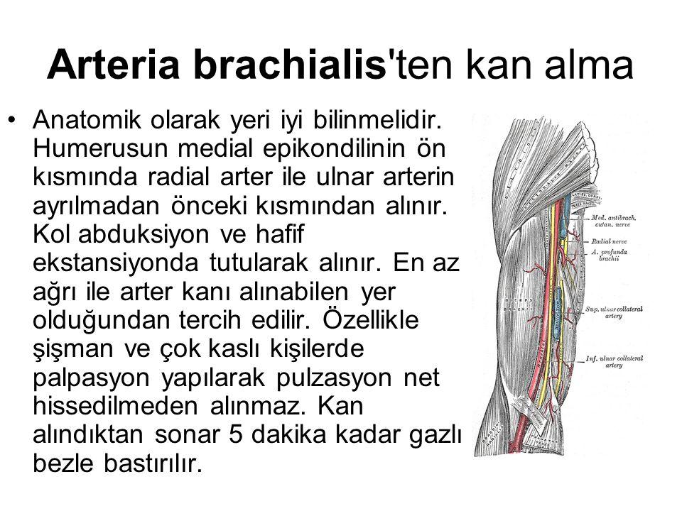 Arteria brachialis ten kan alma
