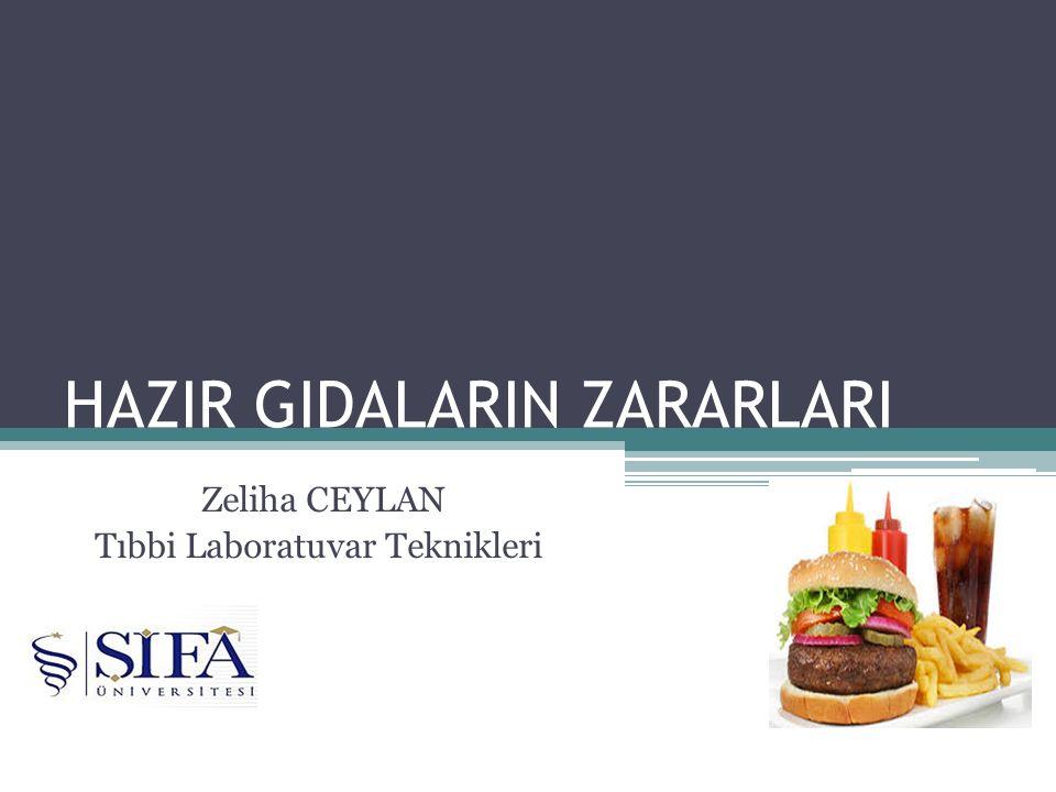 HAZIR GIDALARIN ZARARLARI