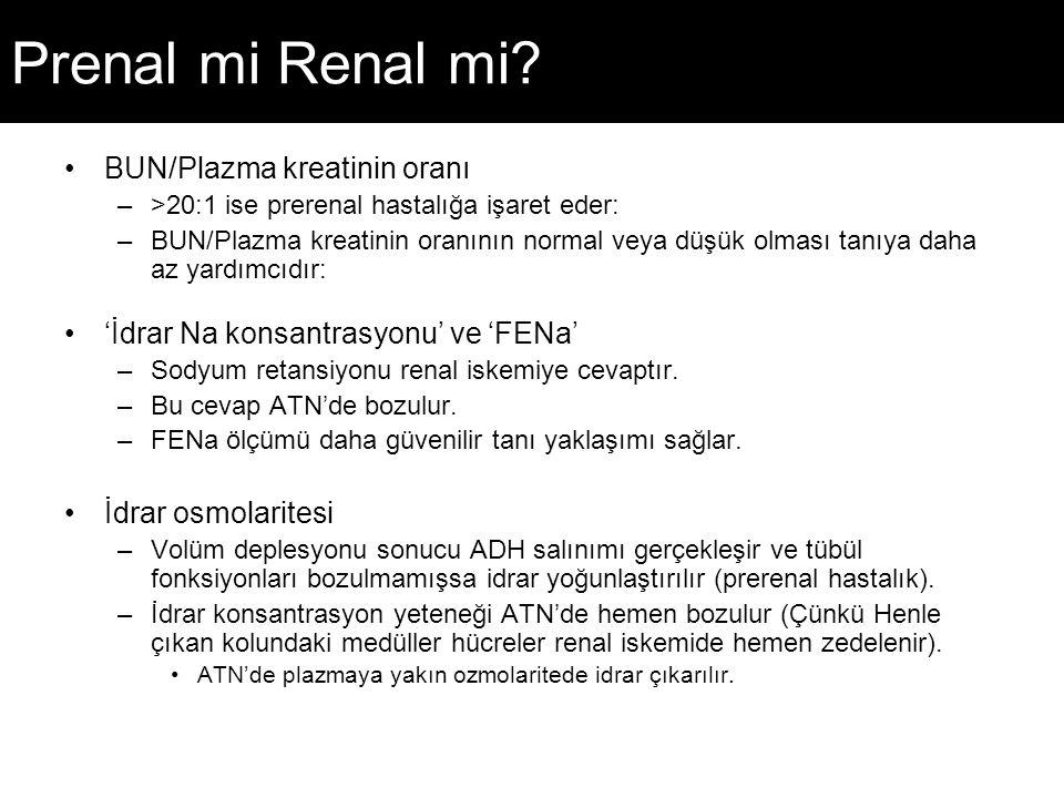 Prenal mi Renal mi BUN/Plazma kreatinin oranı