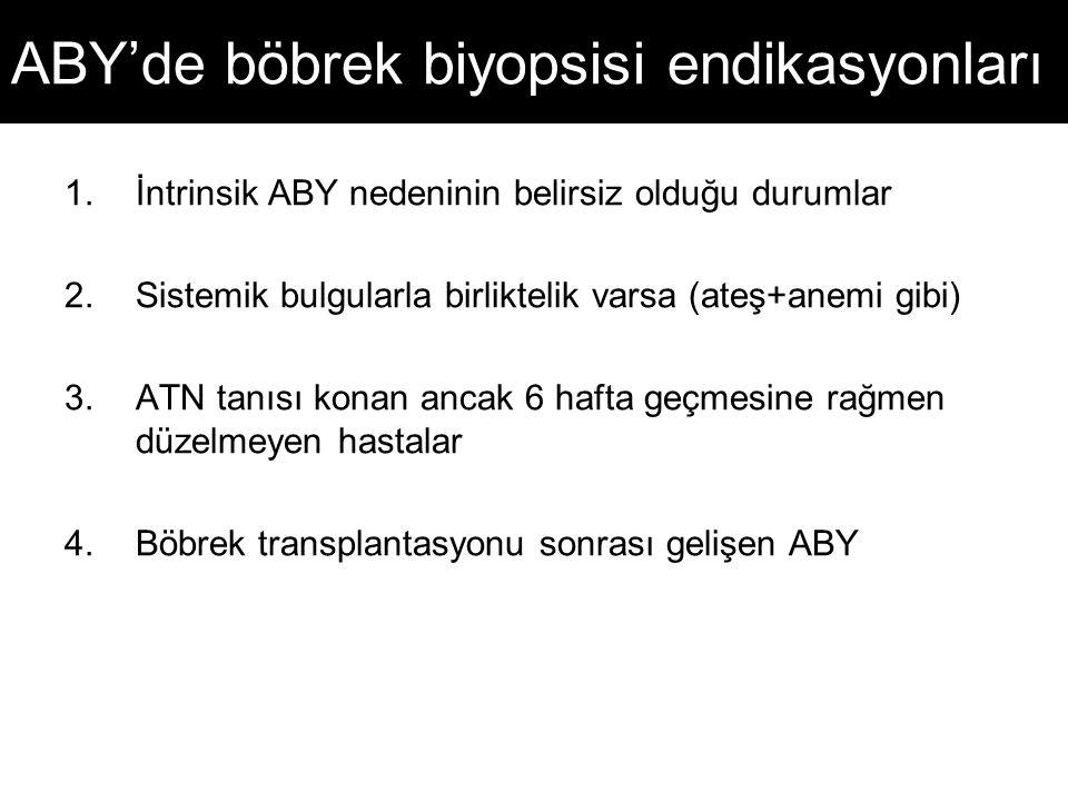 ABY'de böbrek biyopsisi endikasyonları