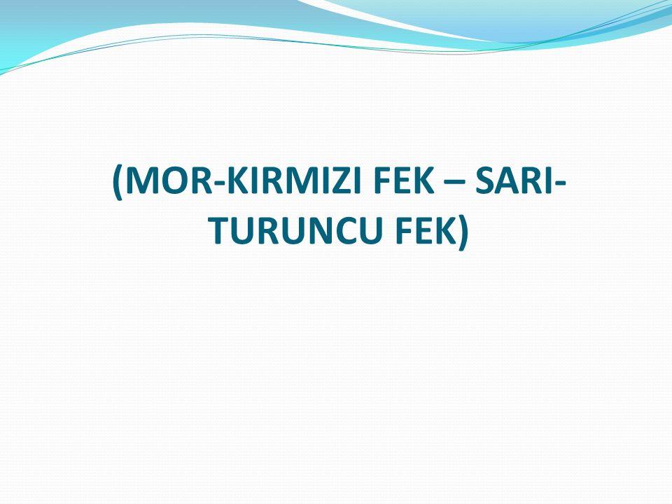 (MOR-KIRMIZI FEK – SARI-TURUNCU FEK)