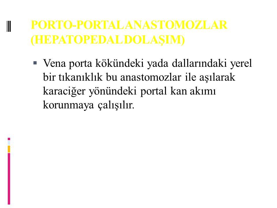 PORTO-PORTAL ANASTOMOZLAR (HEPATOPEDAL DOLAŞIM)