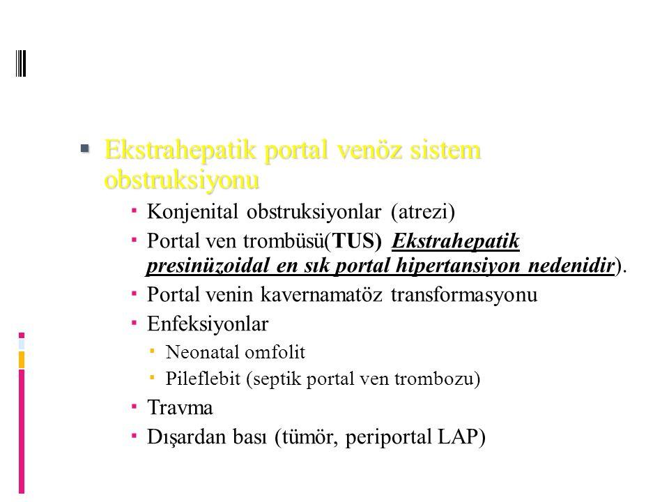Ekstrahepatik portal venöz sistem obstruksiyonu