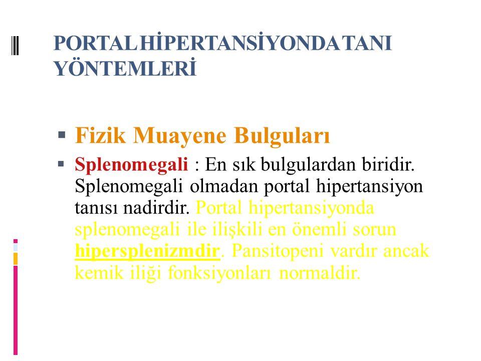 PORTAL HİPERTANSİYONDA TANI YÖNTEMLERİ