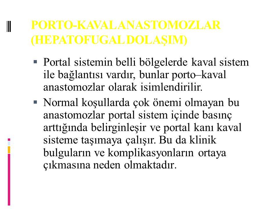 PORTO-KAVAL ANASTOMOZLAR (HEPATOFUGAL DOLAŞIM)