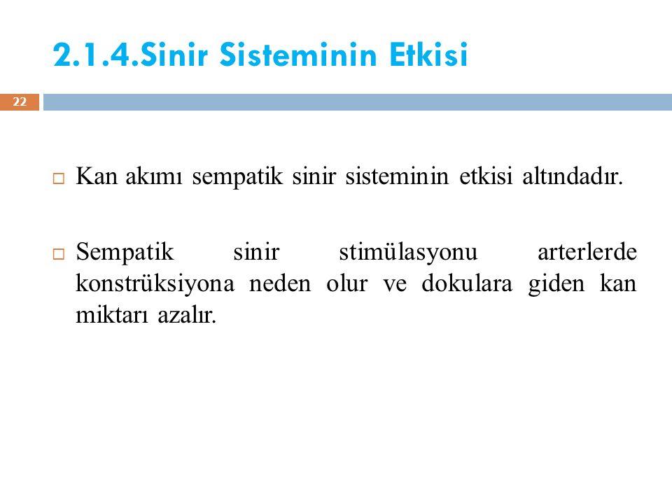 2.1.4.Sinir Sisteminin Etkisi