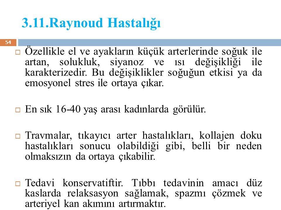 3.11.Raynoud Hastalığı