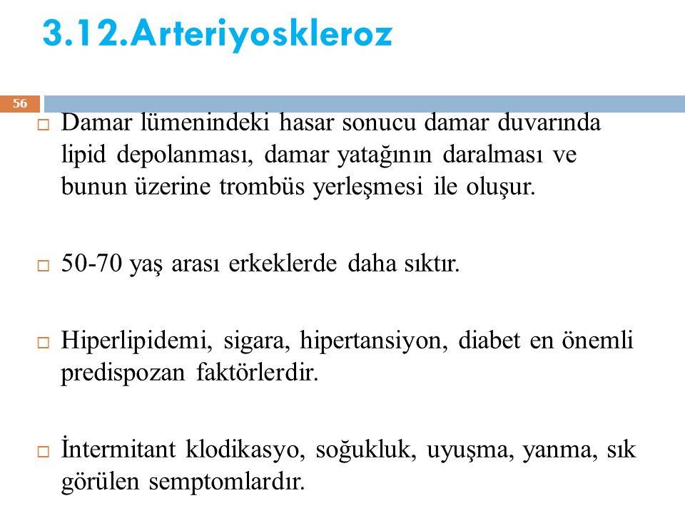 3.12.Arteriyoskleroz