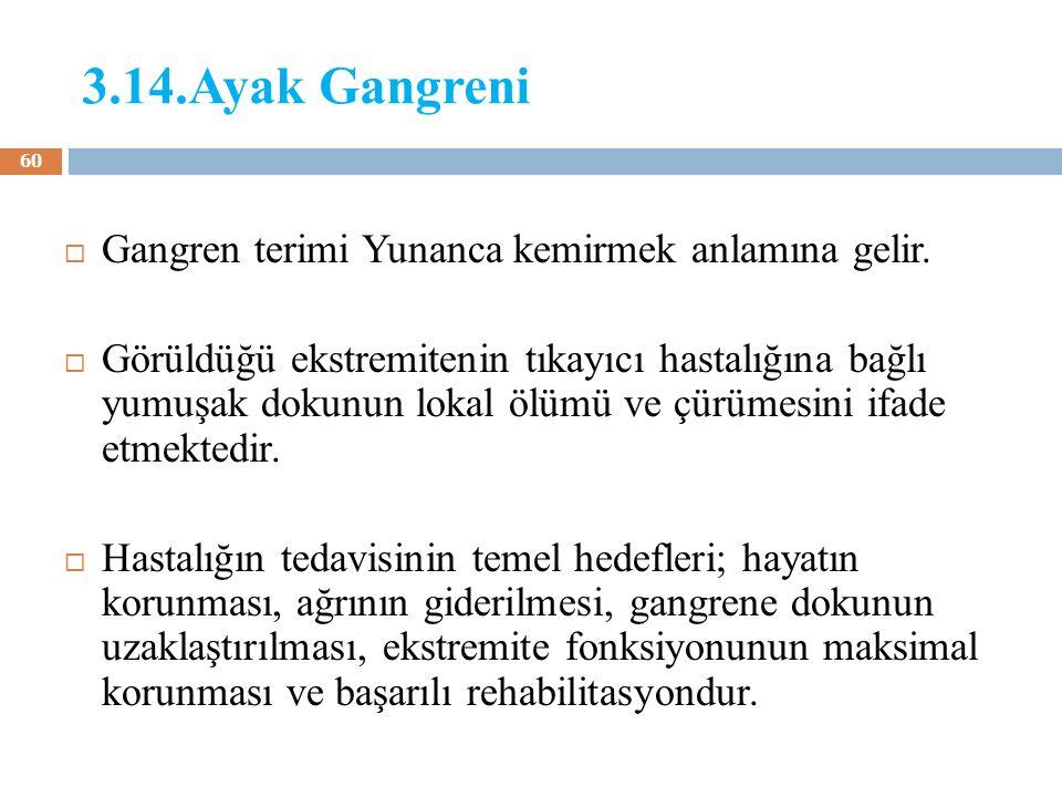 3.14.Ayak Gangreni Gangren terimi Yunanca kemirmek anlamına gelir.