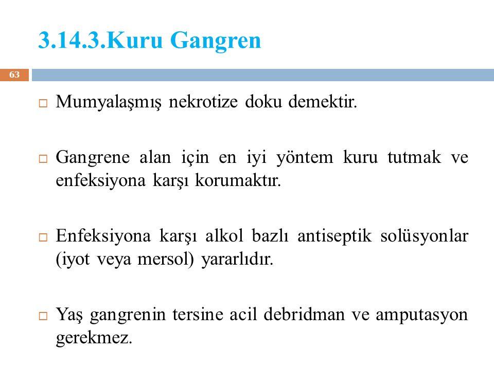 3.14.3.Kuru Gangren Mumyalaşmış nekrotize doku demektir.