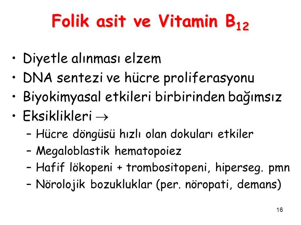 Folik asit ve Vitamin B12 Diyetle alınması elzem