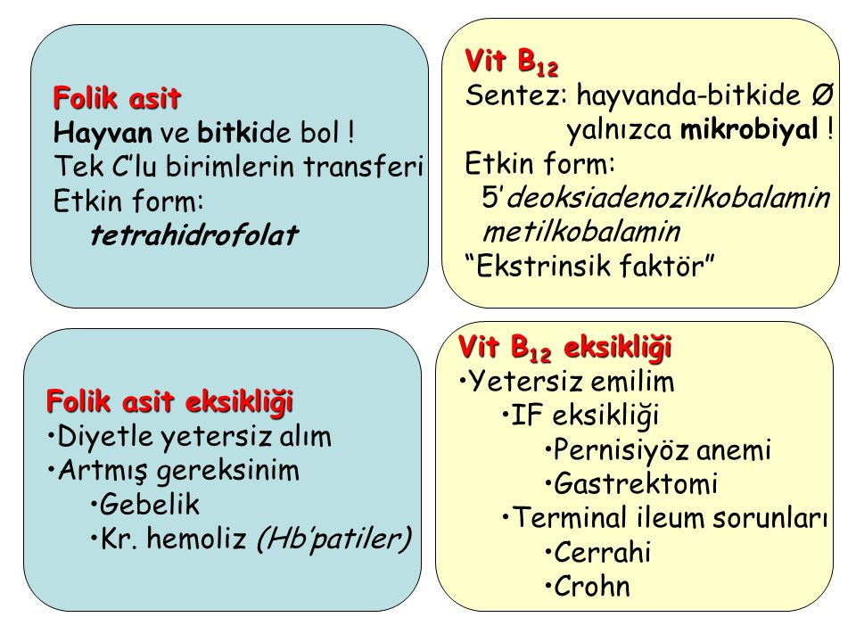 Vit B12 Sentez: hayvanda-bitkide Ø. yalnızca mikrobiyal ! Etkin form: 5'deoksiadenozilkobalamin.