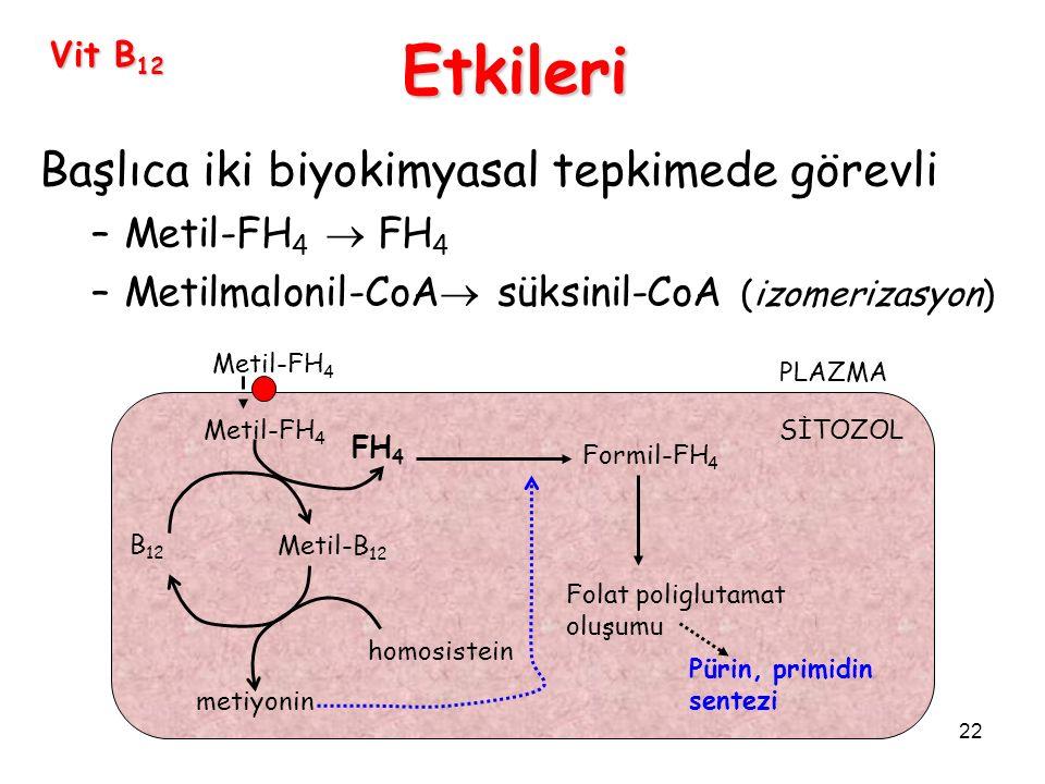Etkileri Başlıca iki biyokimyasal tepkimede görevli Metil-FH4  FH4